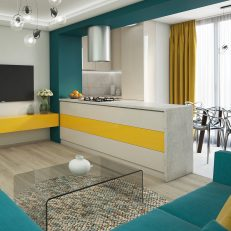 Design interior apartament Ovidiu